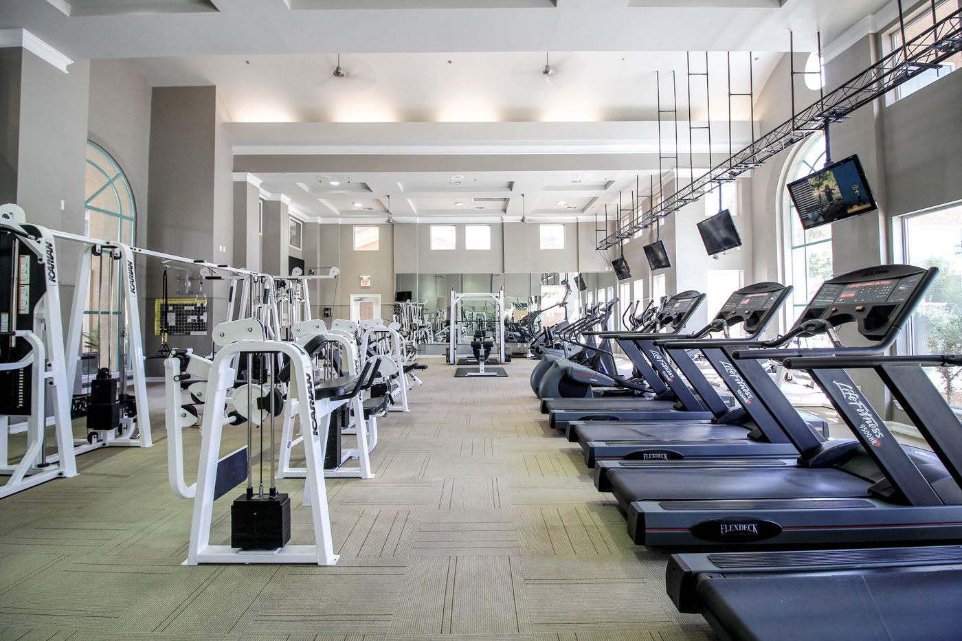 Large gym with treadmills lining a wall with windows.
